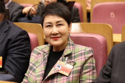 张凯丽、冯远征、潘鲁生等文艺界委员发声两会 献策行业发展